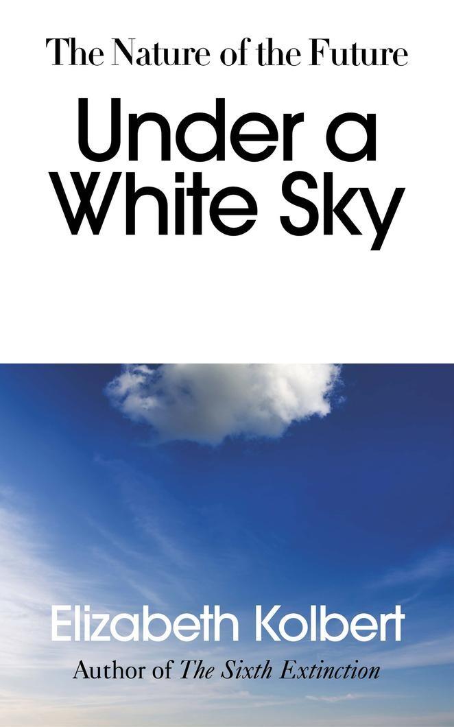 Under a white sky - Foto Amazon