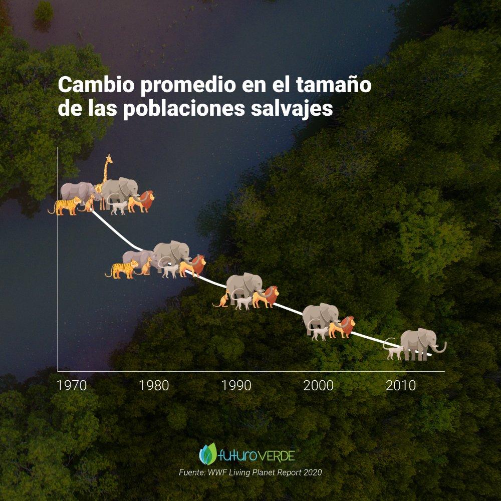 Promedio de las poblaciones salvajes a lo largo de los años