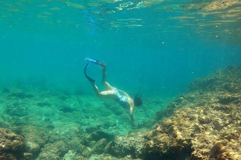 Surge tecnología que busca restaurar los arrecifes de coral