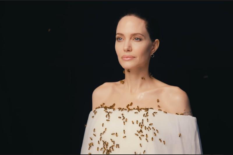 Angelina Jolie se cubre de abejas para crear consciencia