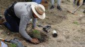Ectagono: ayudando a crear una sociedad inclusiva con la naturaleza