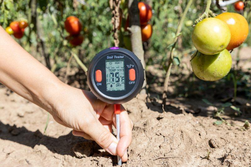 Tecnología genética para que los cultivos resistan la sequía