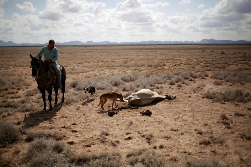 México sufre una de sus peores sequías