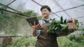 Una app promete gestionar una agricultura más sostenible