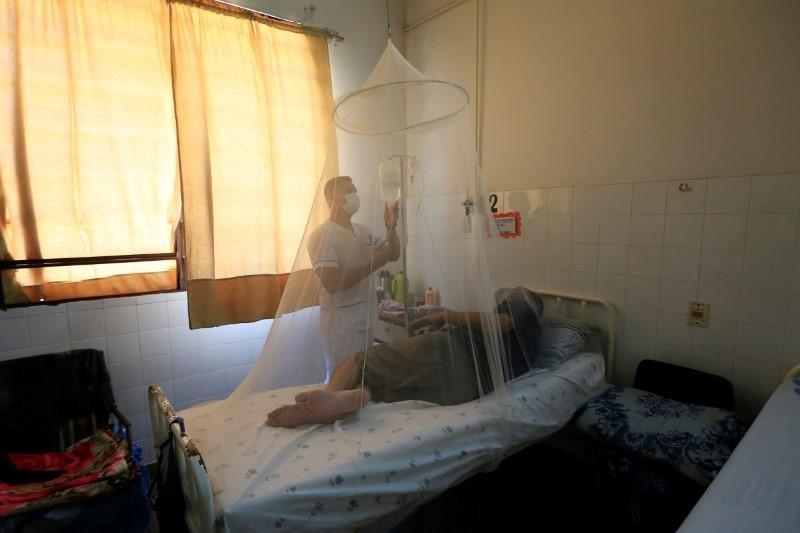 Más de 8 mil millones de personas en riesgo de dengue y malaria por la crisis climática