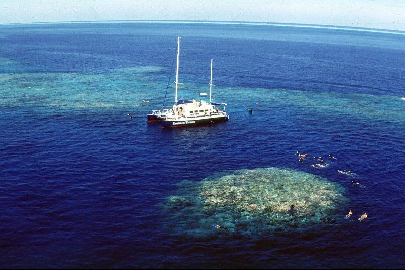 Unesco advierte a Australia sobre estar en peligro la Gran Barrera de Coral