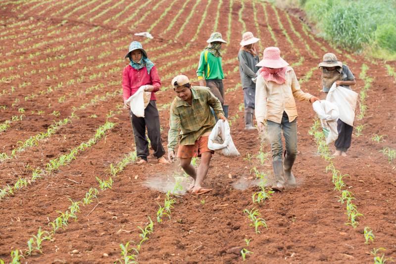 Impulsar la producción de alimentos para la naturaleza es la mejor opción