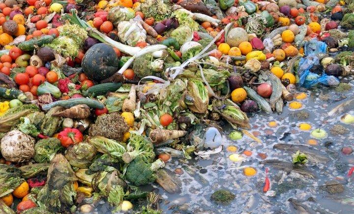 Las sobras que son desechadas terminan contaminando el ambiente. - Foto por James Arnold/Gettyimages