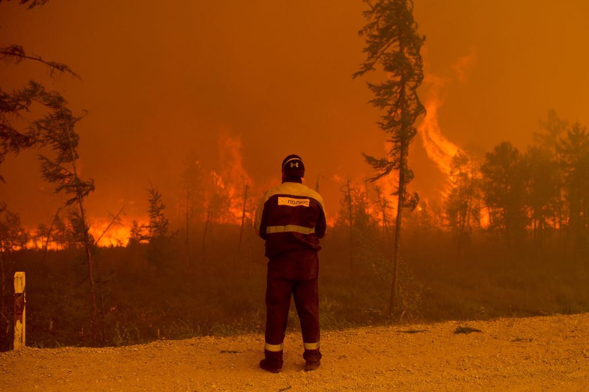 Los incendios forestales afectan los sumideros de carbono naturales - Foto Ivan Nikiforov/AP