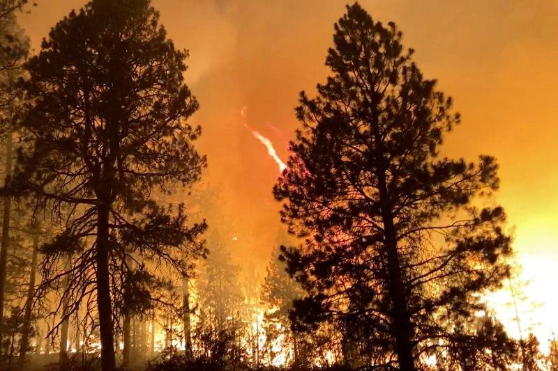 La temporada de incendios forestales puede extenderse hasta septiembre
